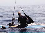 奇趣大自然20110411期:徒手捕鱼