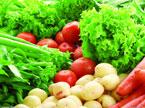 如何买到放心的蔬菜